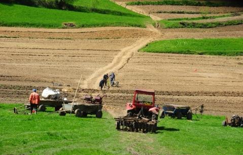 terenurile-agricole-vizorul-investitorilor1355482268